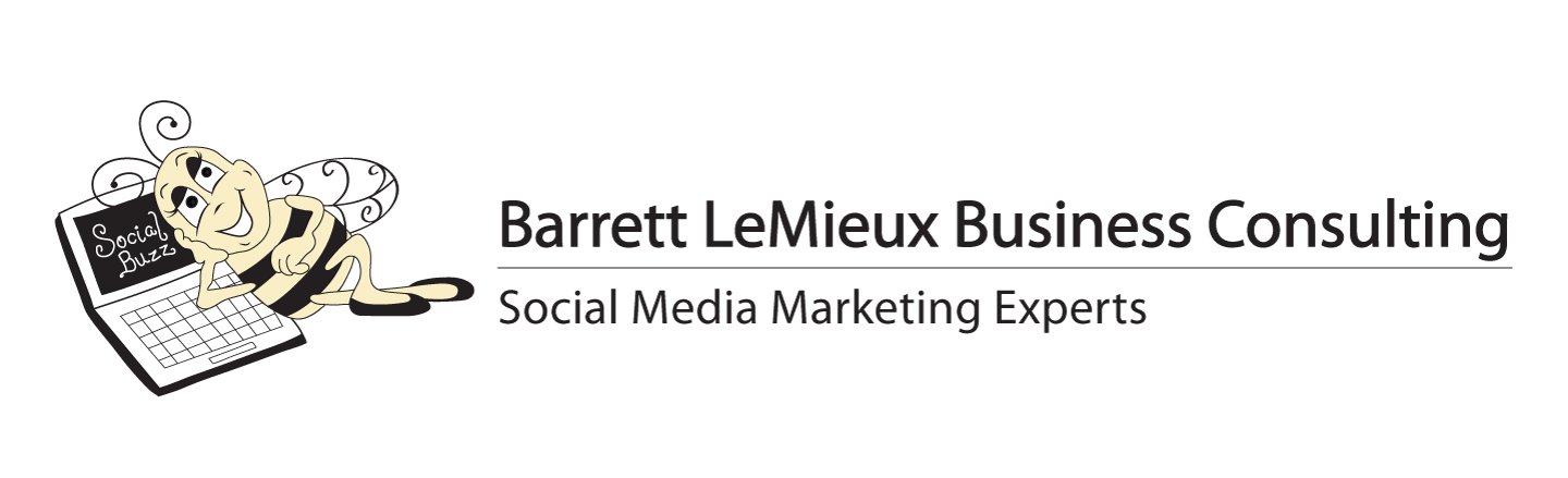 Barrett LeMieux Business Consulting